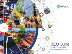 ceo-guide-to-the-sustainable-development-goaals-s