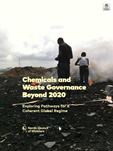chemicals-and-waste-governance-beyond-2020-s