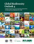 global-biodiversity-outlook-4-s