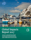 global-impacts-report-2017-s