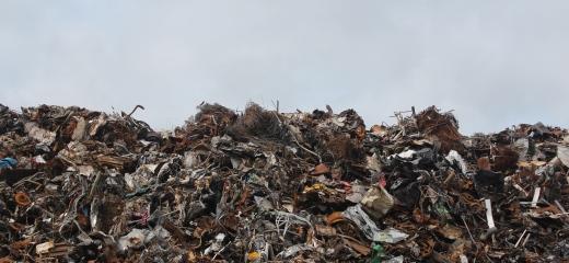 Śmieci – szansa zamiast problemu