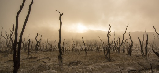 Zmniejszanie społecznych skutków klęsk żywiołowych