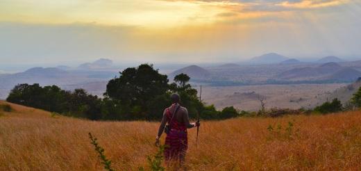 Mikro-ubezpieczenia chroniące drobne przedsiębiorstwa rolne