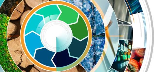 CEO Guide to The Circular Economy