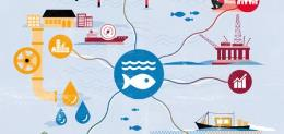 Conserve and Sustainably Use the Oceans, Seas and Marine Resources
