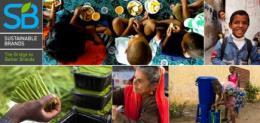 NGOs Leading the Way on Sustainable Development Goals