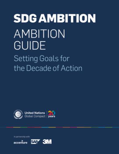 Ambition Guide: Setting Goals for the Decade of Action
