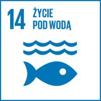 14. Życie pod wodą