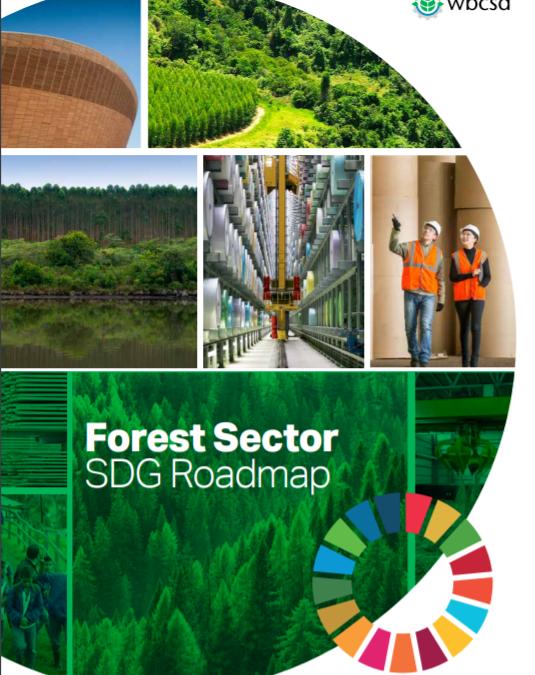 Forest Sector SDG Roadmap
