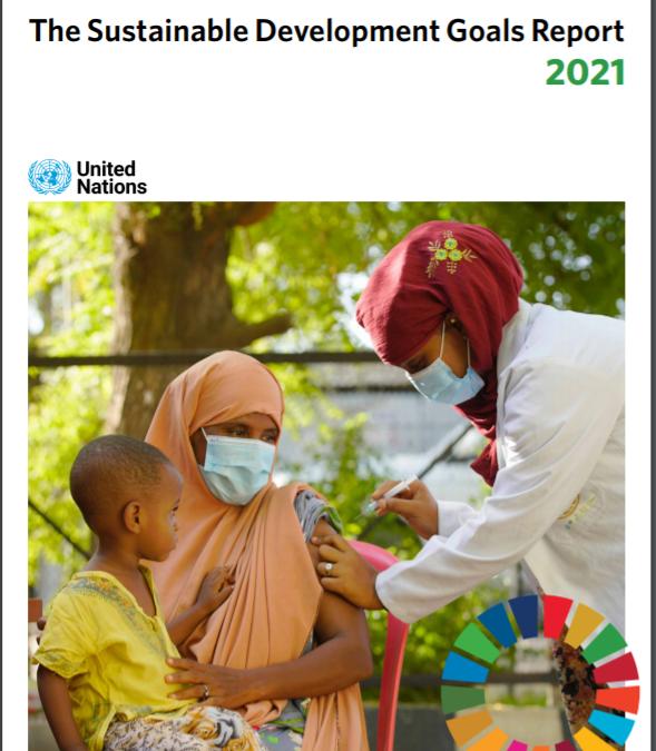 The Sustainable Development Goals Report 2021